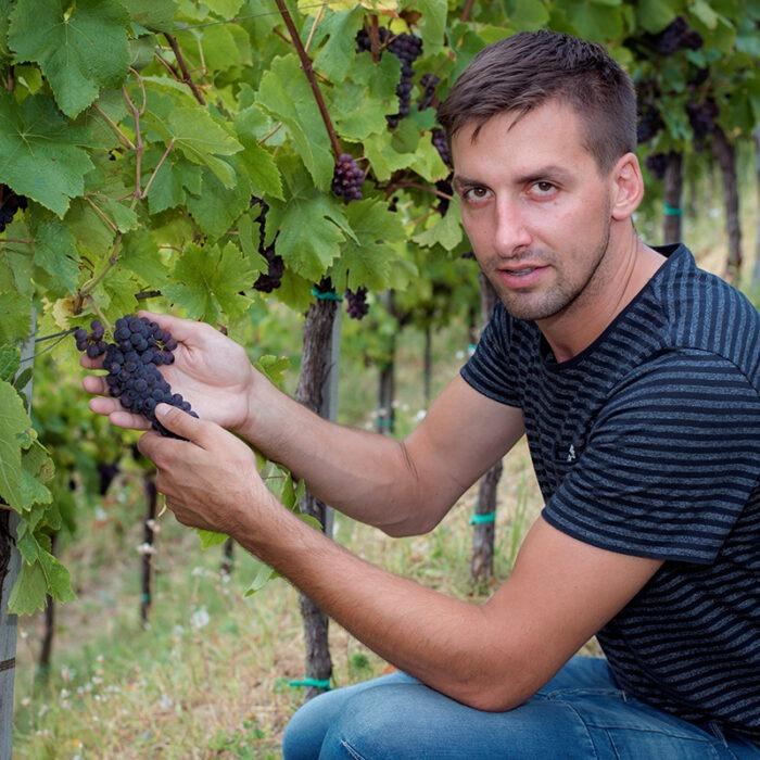 3stekar wines bewines
