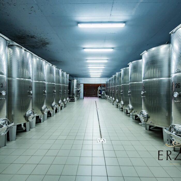 4erzetic wines bewines