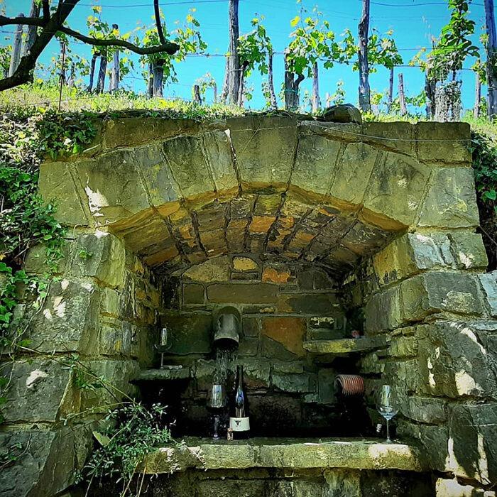 2uou wines bewines