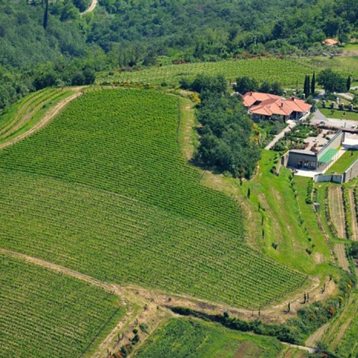 3santomas wines bewines