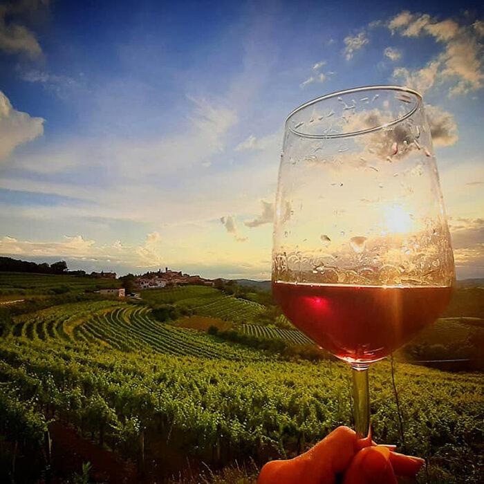 4uou wines bewines